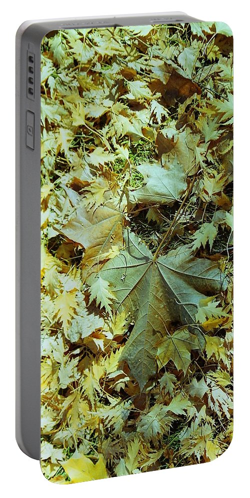 Fall Leaves Portable Battery Charger featuring the photograph Fall Leaves by Mike Wheeler