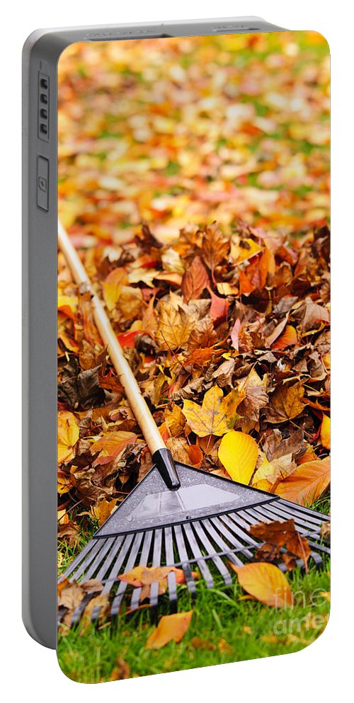 Rake Portable Battery Charger featuring the photograph Fall Leaves With Rake by Elena Elisseeva