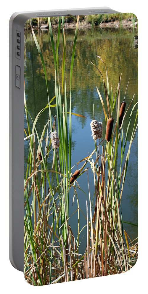 Montana Portable Battery Charger featuring the photograph Fall Reflections by Bob Hislop