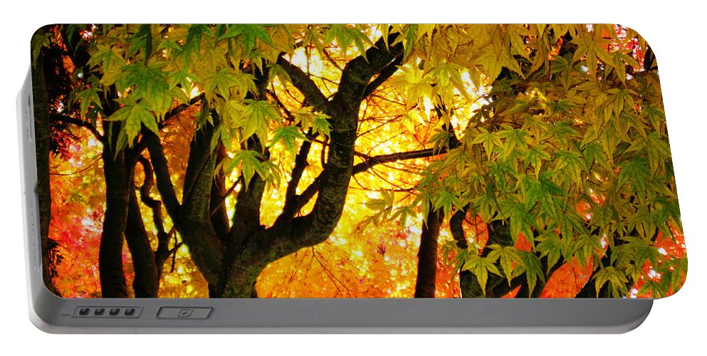 Trees Portable Battery Charger featuring the photograph Fall Trees On A Country Road 3 by Carlene Salazar