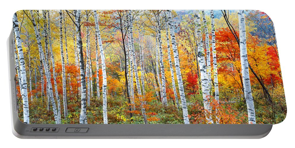 Photography Portable Battery Charger featuring the photograph Fall Trees, Shinhodaka, Gifu, Japan by Panoramic Images