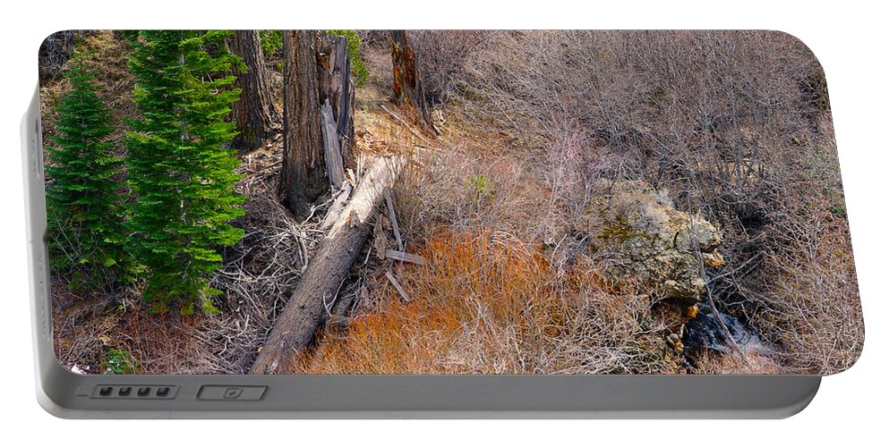 Nevada Portable Battery Charger featuring the photograph Fallen by Brent Dolliver
