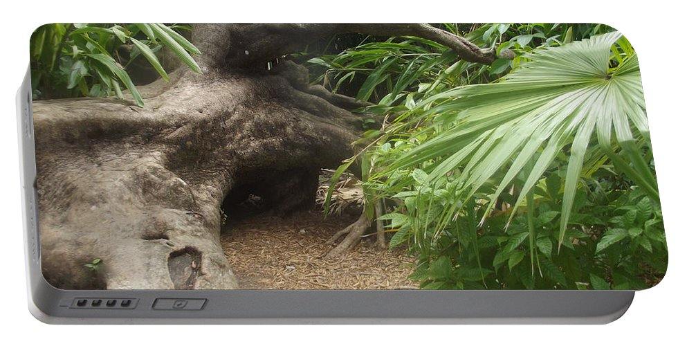 Tree Portable Battery Charger featuring the photograph Fallen Giant by Jennifer Lavigne