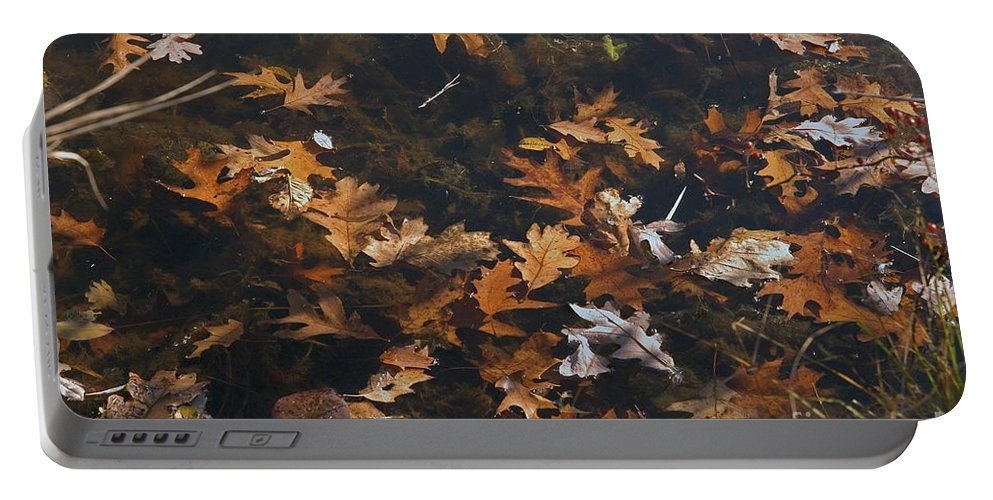 Fall Portable Battery Charger featuring the photograph Fallen by Joseph Yarbrough