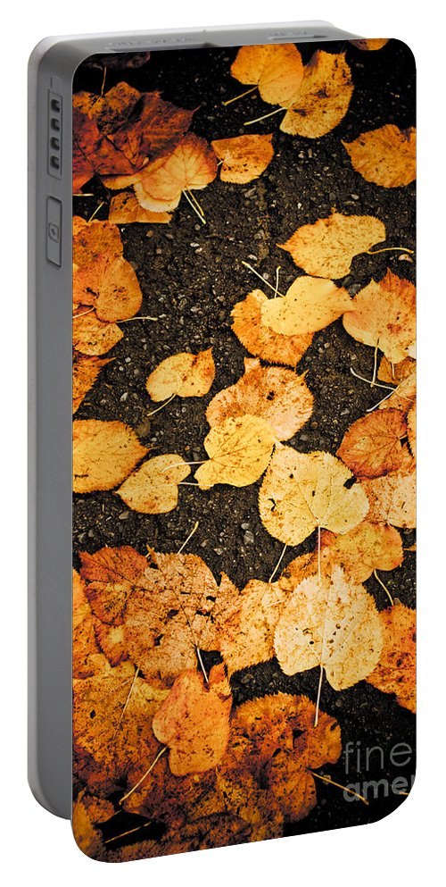 Abstract Portable Battery Charger featuring the photograph Fallen Leaves by Silvia Ganora