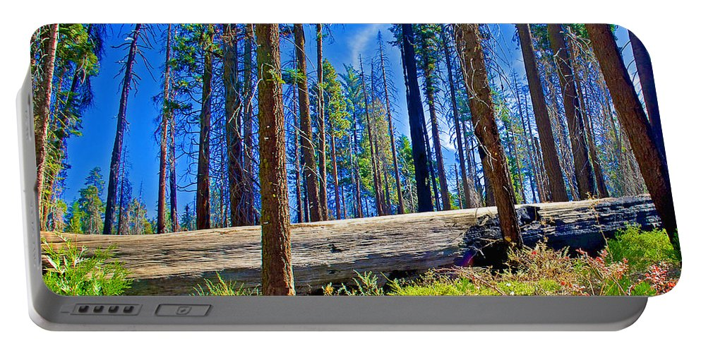 Fallen Sequoia In Mariposa Grove In Yosemite National Park Portable Battery Charger featuring the photograph Fallen Sequoia In Mariposa Grove In Yosemite National Park-california by Ruth Hager