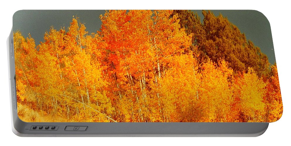 Fall Trees Portable Battery Charger featuring the photograph Falls Trees by Mike Wheeler