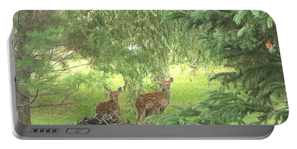 Deer Portable Battery Charger featuring the photograph Family by Michael Krek