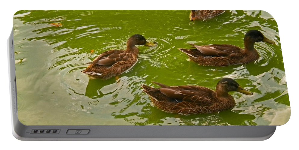 Ducks Portable Battery Charger featuring the photograph Family Time by Violeta Ianeva