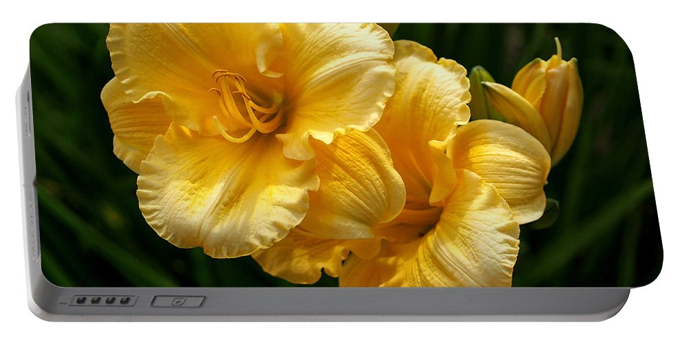 Lilies Portable Battery Charger featuring the photograph Fancy Yellow Daylilies by Rona Black