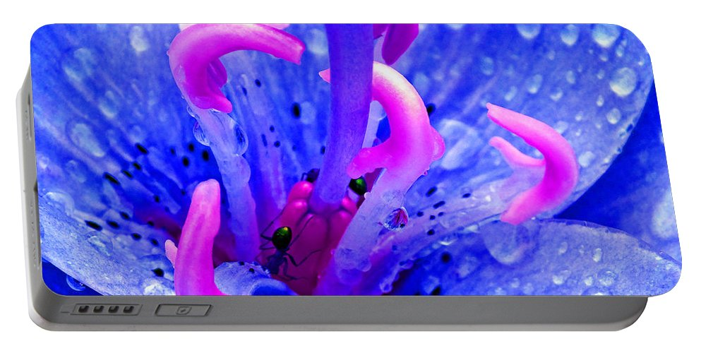 Duane Mccullough Portable Battery Charger featuring the photograph Fantasy Flower 6 by Duane McCullough