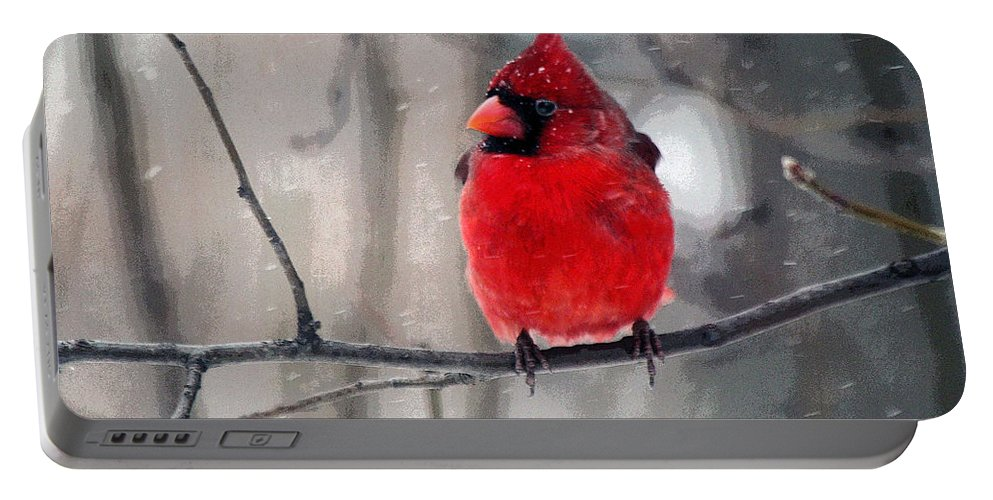 Male Portable Battery Charger featuring the photograph Fat Cardinal In The Snow by Catherine Sherman