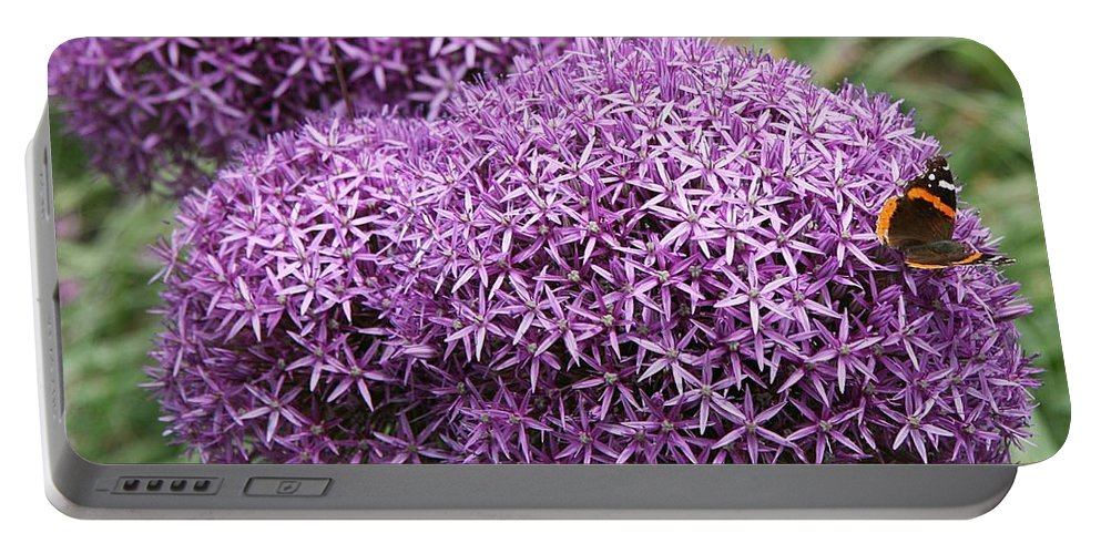 Allium Portable Battery Charger featuring the photograph Favorite Butterfly Spot by Christiane Schulze Art And Photography