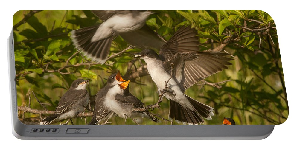 Bird Portable Battery Charger featuring the photograph Feeding Frenzy by Richard Kitchen