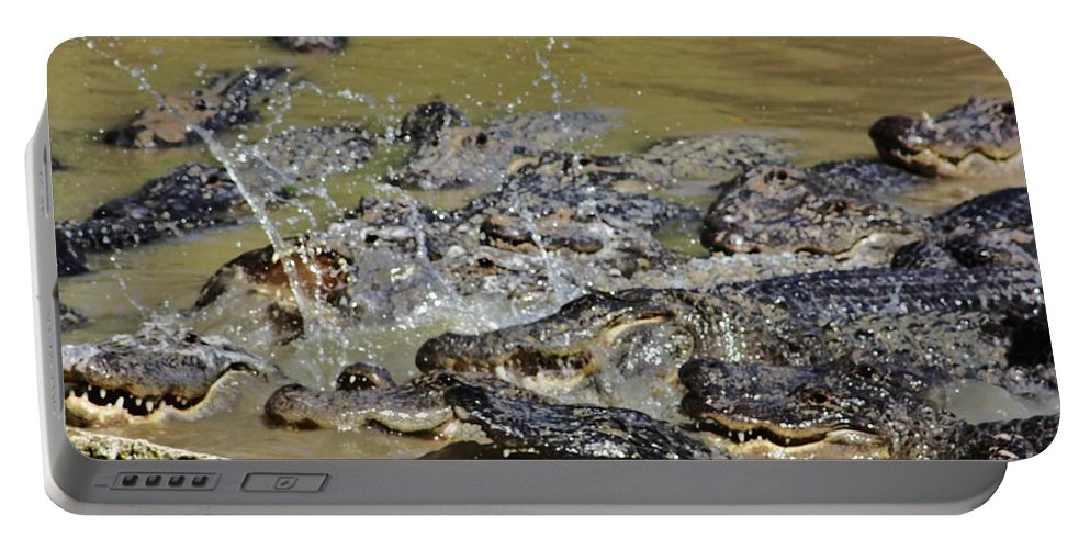 Everglades Portable Battery Charger featuring the photograph Feeding Time 1 by Chuck Hicks