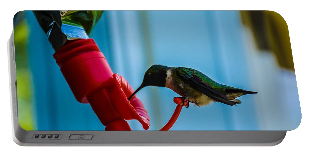 Humming Bird Portable Battery Charger featuring the photograph Feeding Time by Sherman Perry
