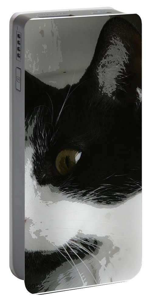 Cat Portable Battery Charger featuring the photograph Mischief Maker by Kathy Barney