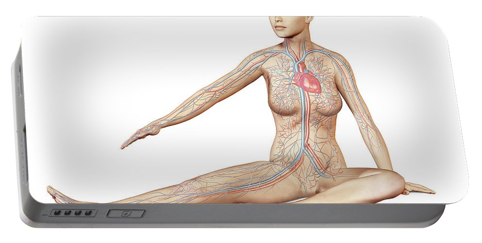 Three Dimensional Portable Battery Charger featuring the digital art Female Body Sitting In Dynamic Posture by Leonello Calvetti