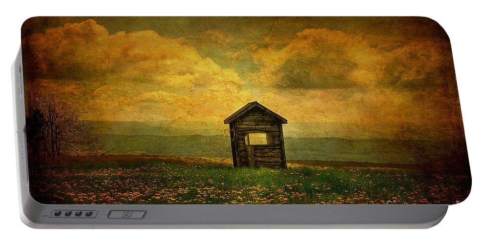 Shed Portable Battery Charger featuring the photograph Field Of Dandelions by Lois Bryan