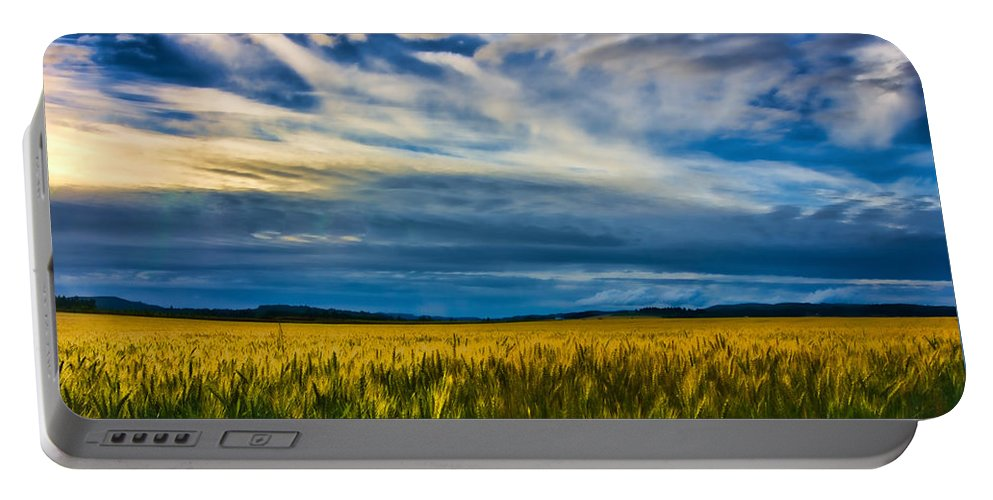 Skies Portable Battery Charger featuring the photograph Field Of Gold by Don Schwartz