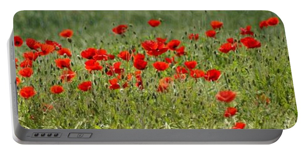 Poppies Portable Battery Charger featuring the photograph Field Of Poppies by Carol Lynch