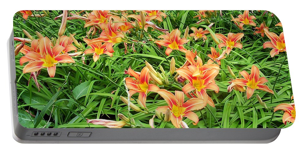 Flower Portable Battery Charger featuring the photograph Field Of Tiger Lilies by Aimee L Maher ALM GALLERY