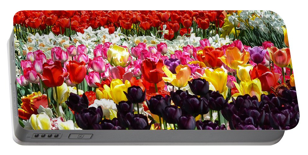 Tulips Portable Battery Charger featuring the photograph Field Of Tulips Ll by Wanda J King