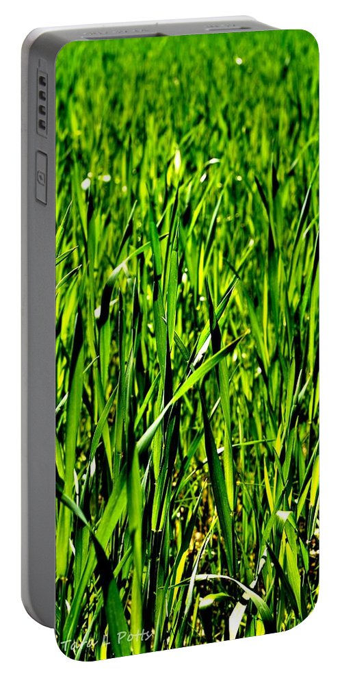 Field Portable Battery Charger featuring the photograph Field by Tara Potts
