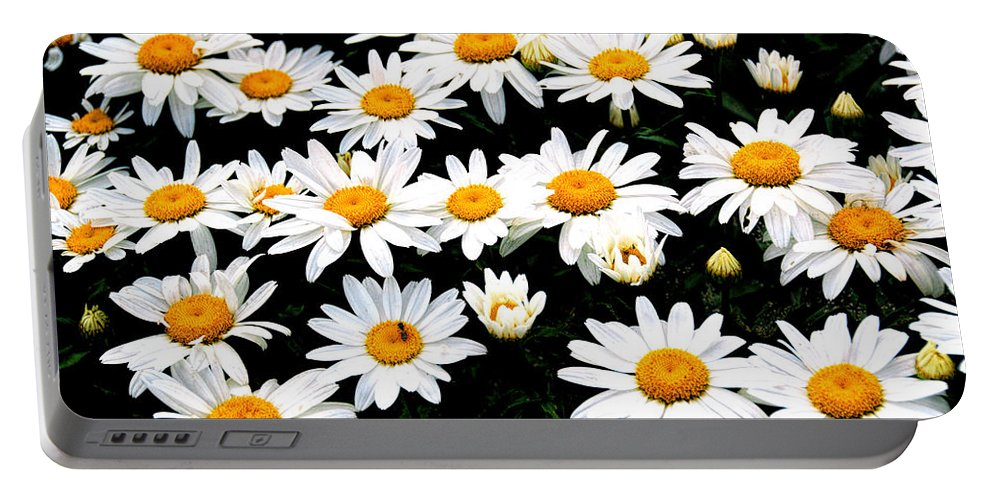 Patch Of Daisies Portable Battery Charger featuring the photograph Fields Of Daisies by Pat Cook
