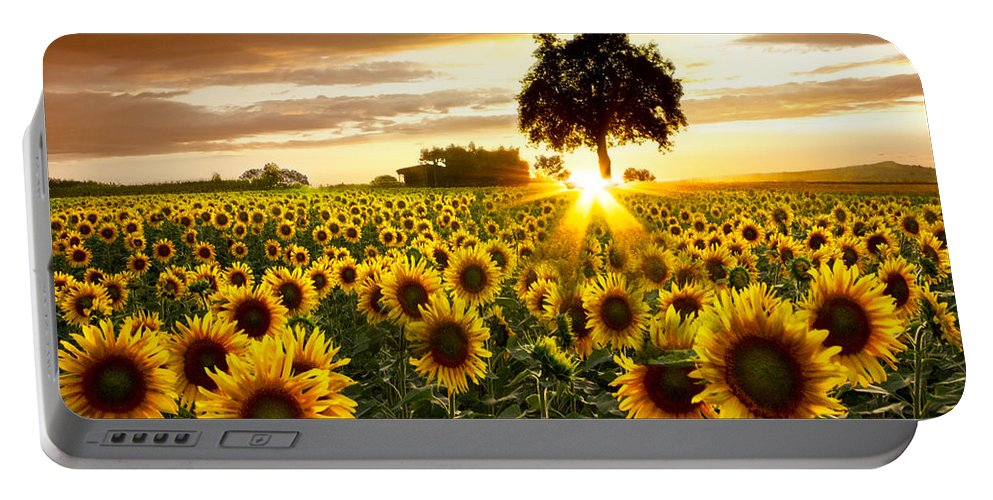 Appalachia Portable Battery Charger featuring the photograph Fields Of Gold by Debra and Dave Vanderlaan