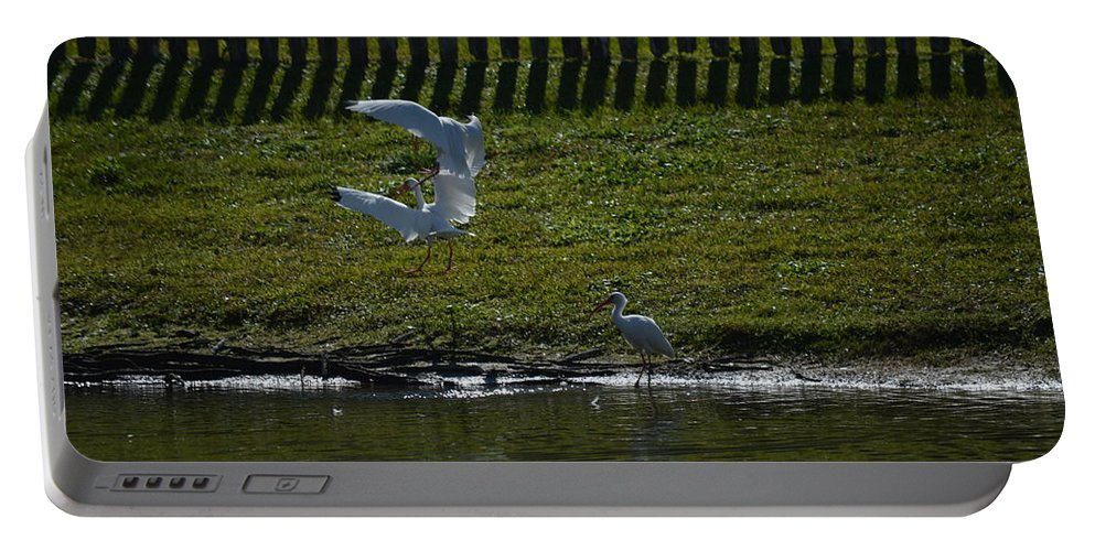 Pond Portable Battery Charger featuring the photograph Fighting Birds by Linda Kerkau