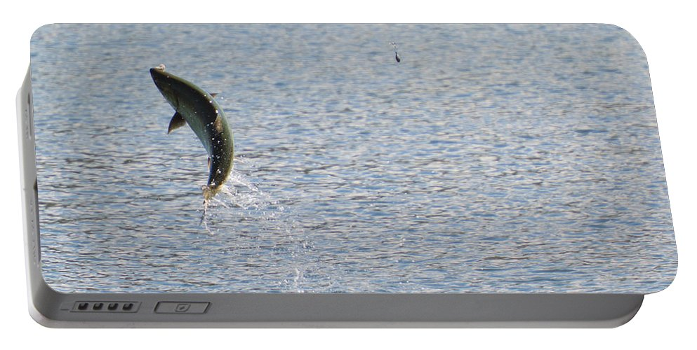 Chinook Salmon Portable Battery Charger featuring the photograph Fighting Chinook Salmon by Mike Dawson
