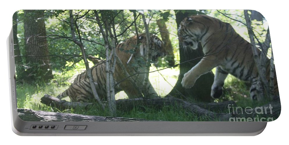Fighting Siberian Tigers Portable Battery Charger featuring the photograph Fighting Siberian Tigers by John Telfer