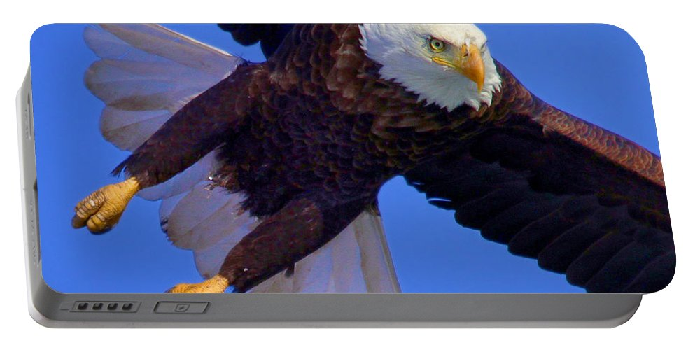 Eagle Portable Battery Charger featuring the photograph Final Approach by John Absher