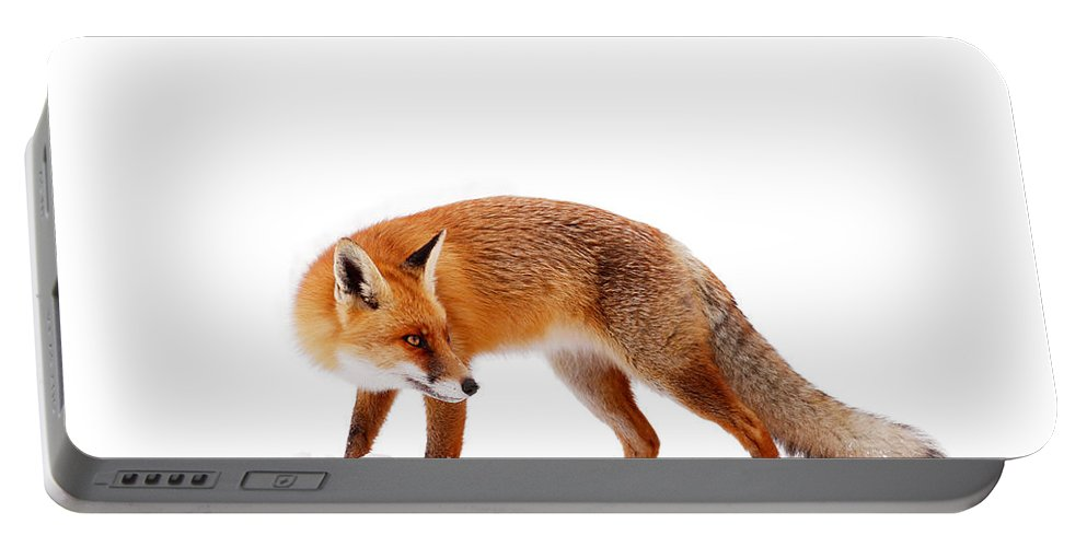 Fox Portable Battery Charger featuring the photograph Fire 'n Ice by Roeselien Raimond