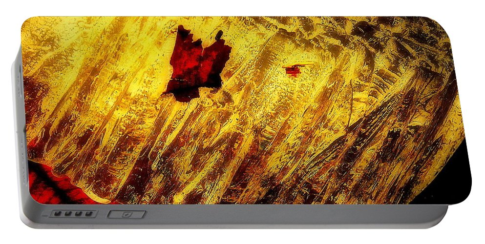 Frozen Leaves Portable Battery Charger featuring the photograph Fire Of The Frost by Tami Quigley