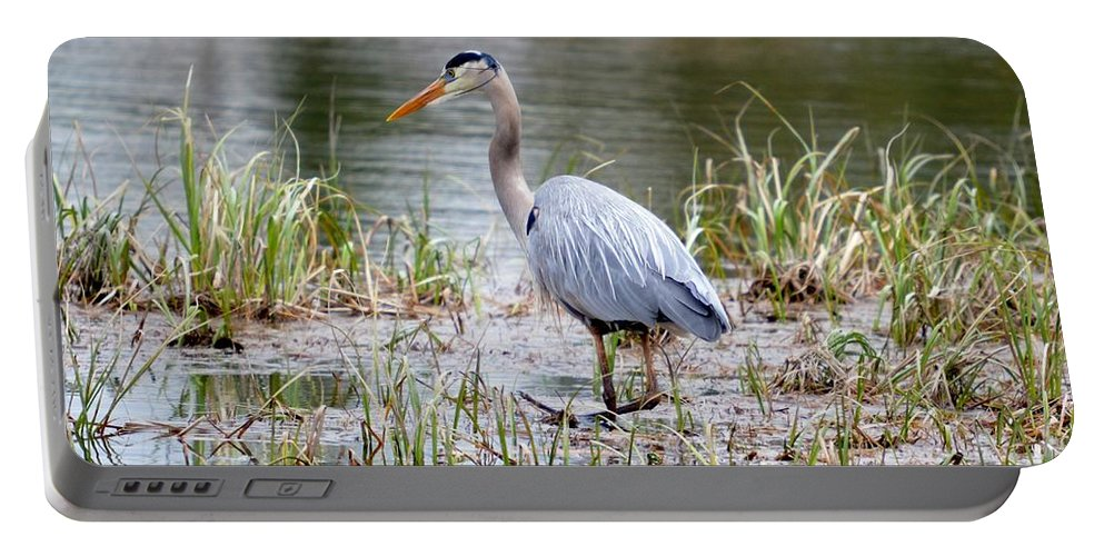 Great Blue Heron Portable Battery Charger featuring the photograph Fishing Heron by Thomas Phillips