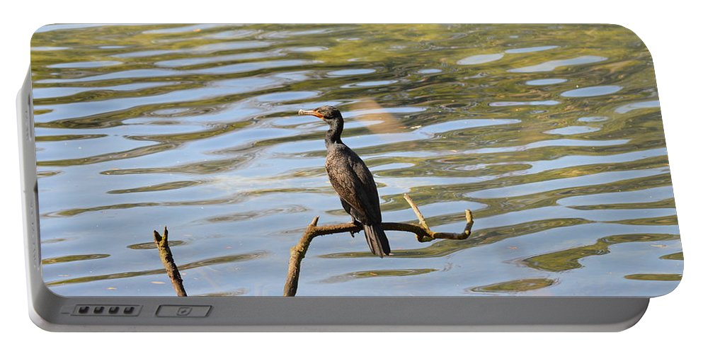 Bird Portable Battery Charger featuring the photograph Fishing by Linda Kerkau