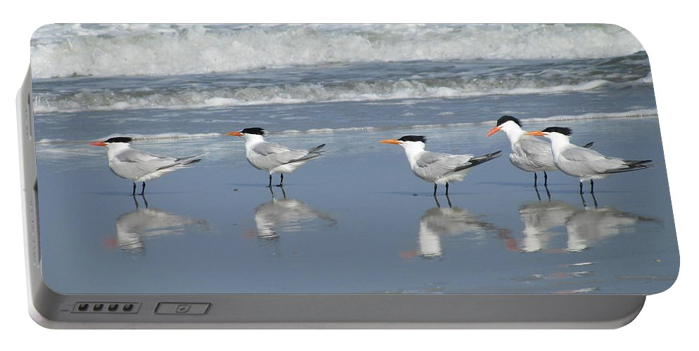 Landscape Portable Battery Charger featuring the photograph Five Royal Friends by Ellen Meakin