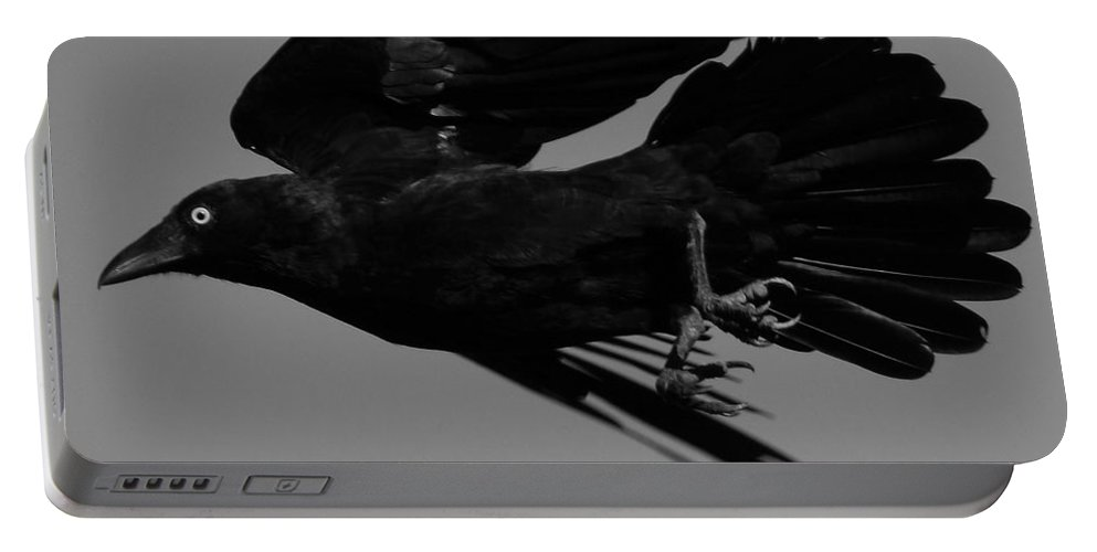 Raven Portable Battery Charger featuring the photograph Flight Of The Raven by Bruce J Robinson