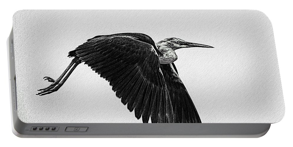 Flight Portable Battery Charger featuring the photograph Flight Of The White Necked Heron V2 by Douglas Barnard