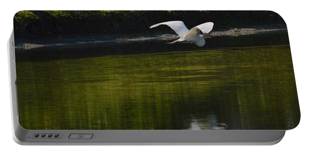 Pond Portable Battery Charger featuring the photograph Flight Over Pond by Linda Kerkau