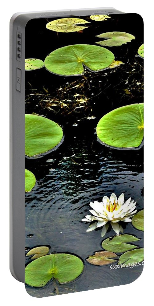 Lily Pads Portable Battery Charger featuring the photograph Floating Lily by Susie Loechler