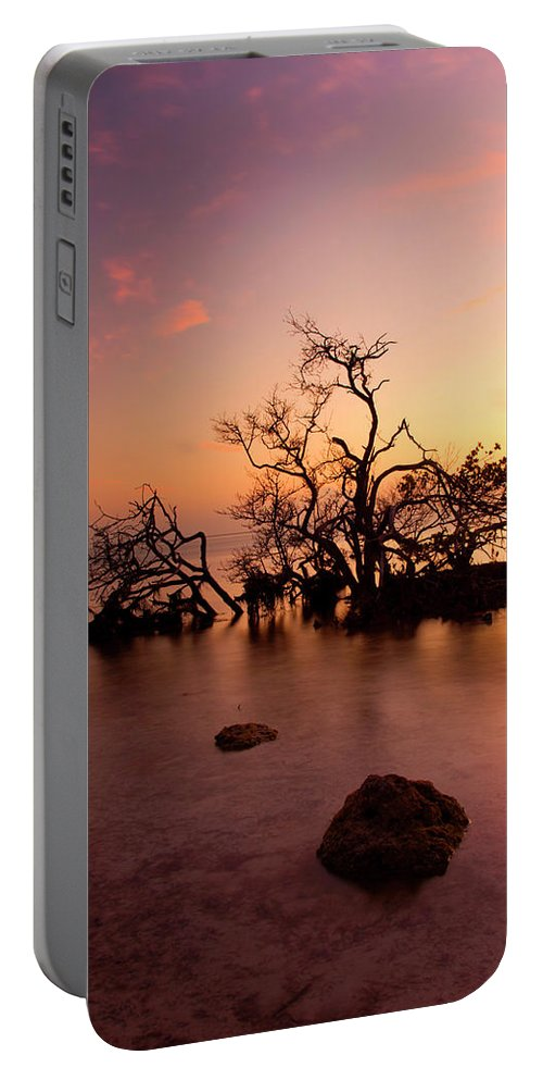 Tree Portable Battery Charger featuring the photograph Florida Keys Sunset by Mike Dawson
