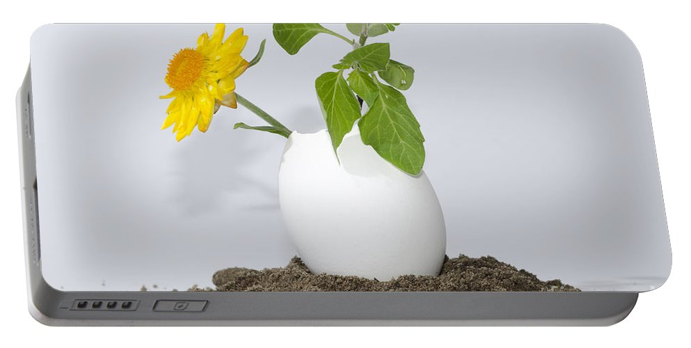 Flower Portable Battery Charger featuring the photograph Flower And Egg by Mats Silvan