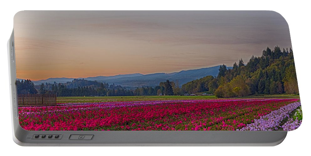 Flowers Portable Battery Charger featuring the photograph Flower Field At Sunset In A Standard Ratio by Leah Palmer
