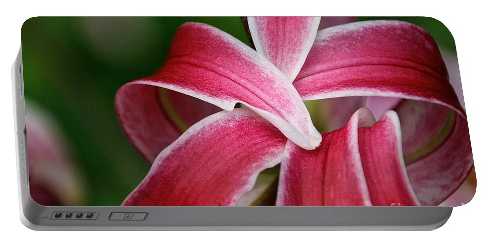 Flower Portable Battery Charger featuring the photograph Flower Fist by Susan Herber