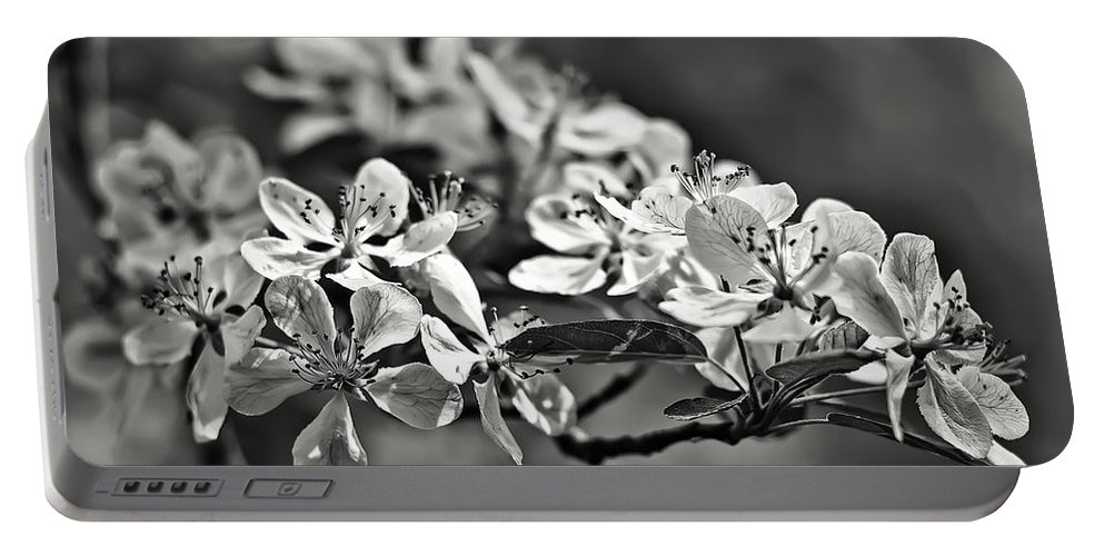 Black Portable Battery Charger featuring the photograph Flowering Crabapple 2 Bw by Scott Wood