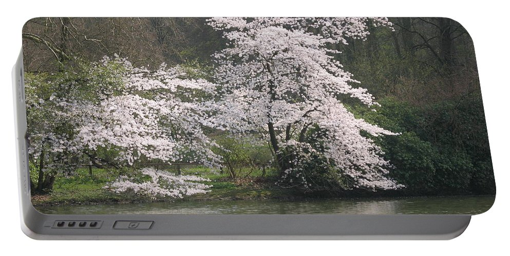 Tree Portable Battery Charger featuring the photograph Flowering Tree At The Pond by Christiane Schulze Art And Photography