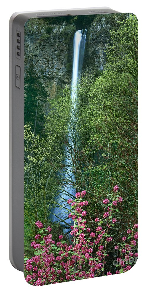 North America Portable Battery Charger featuring the photograph Flowering Tree Below Multnomah Falls Columbia River Gorge Nsa Oregon by Dave Welling